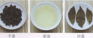 名茶品鉴青茶:大禹岭乌龙茶