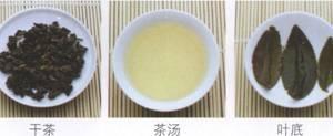 名茶品鉴青茶:金萱乌龙