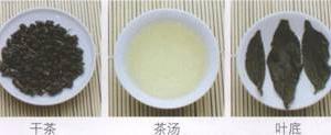 名茶品鉴青茶:冻顶乌龙茶