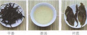 名茶品鉴青茶:岭头单丛