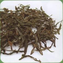 鉴绿茶、泡绿茶:庐山云雾