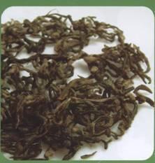 鉴绿茶、泡绿茶:蒙顶甘露