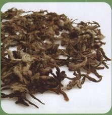 鉴绿茶、泡绿茶:碧螺春