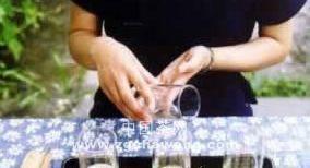 鉴赏绿茶茶艺十二道
