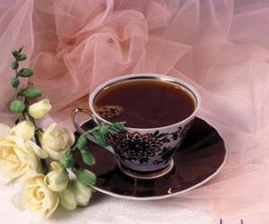 秋日养生明智选择 乌龙茶