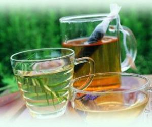 民间药茶一览表 值得收藏