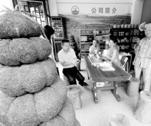 古树茶飙涨引发泡沫隐忧