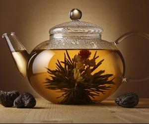 未加工的新鲜茶叶能泡水喝吗
