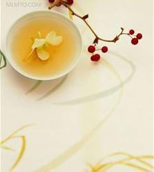 冬季养生佳饮推荐黑茶