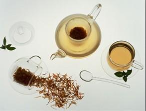 研究表明 长喝苦丁茶能降脂降压