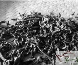 武夷山冬茶今年或将减产一半以上