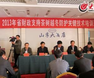 山东省茶业人聚集日照 探讨茶叶生产及越冬技术