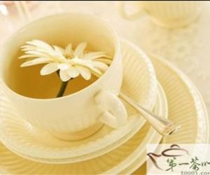 养生花草茶如何喝才健康