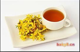 专家提醒 新鲜桂花不能泡茶