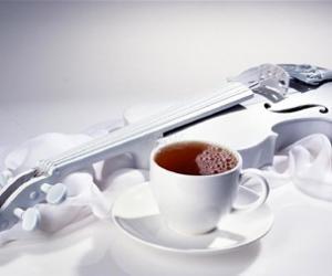 一天的茶叶选择与时间分配