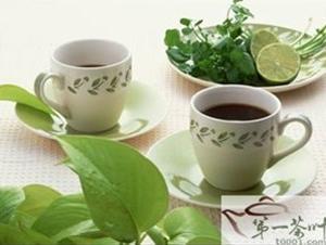 专家建议常喝卡曼橘茶可增强体质