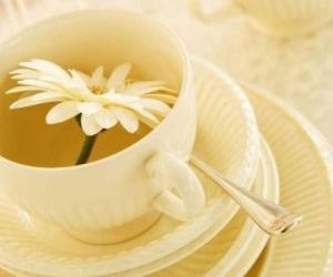 喝茶不当可能致命 15种状况提示你别喝茶
