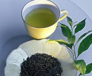 什么茶适合春天饮用