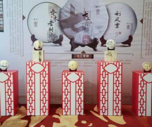茶友相聚广州共品七三青、乔木老树、刮风寨