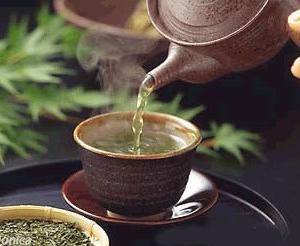 春天喝蒲公英茶对身体健康好处多