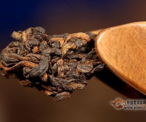 老茶收藏需知:只有今天的好茶才是将来的老茶
