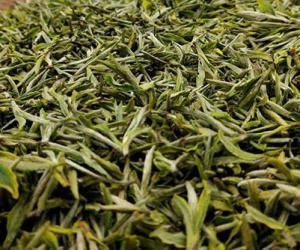 爱茶人士都喜欢的毛峰绿茶