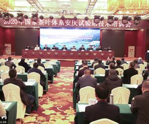 国家茶叶体系安庆试验站技术培训会在岳召开